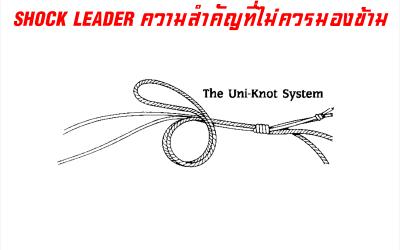 Shock Leader ความสำคัญที่ไม่ควรมองข้าม